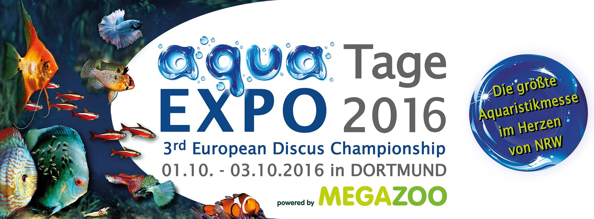 1 3 aqua expo tage 2016 3 diskuschampionat off topic. Black Bedroom Furniture Sets. Home Design Ideas